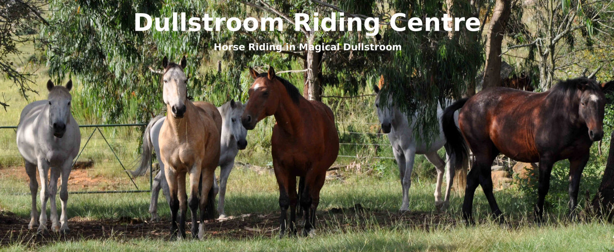 Dullstroom Riding Centre